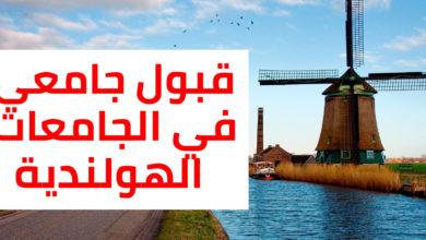 Photo of هولندا: طريقة الحصول على قبول جامعي